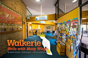 Waikerie District Visitor Information Centre logo