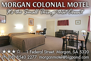 Morgan Colonial Motel logo