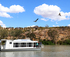 Tour Down Under in Mannum: 45 Minute Nature River Cruise logo