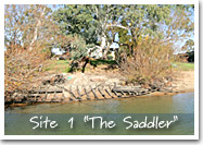 Site 1 - The Saddler