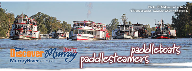 Discover Murray River Paddlesteamers and Paddleboats