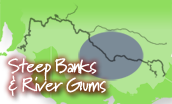 Steep Banks & River Gums